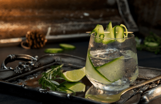 De 6 bedste drinks med gin